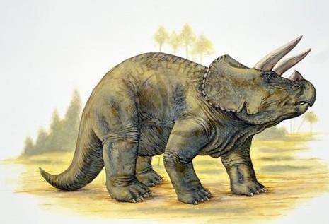 ВСША настройке отыскали останки динозавра возрастом 66 млн лет