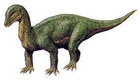 Картинки по запросу Динозавр мышиный ящер