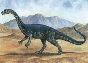 Картинки по запросу Анхизавр
